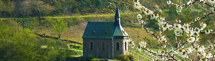 Tolle Aussicht beim Wandern rund um Lorchhausen