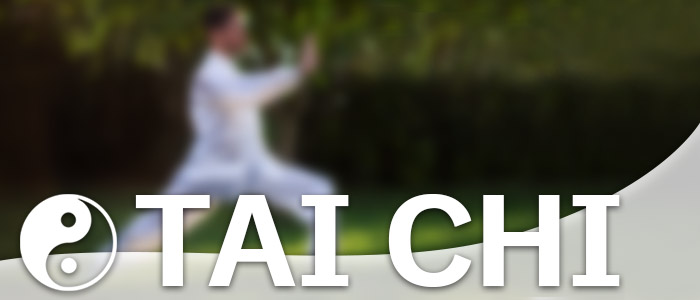 Tai Chi Lorch